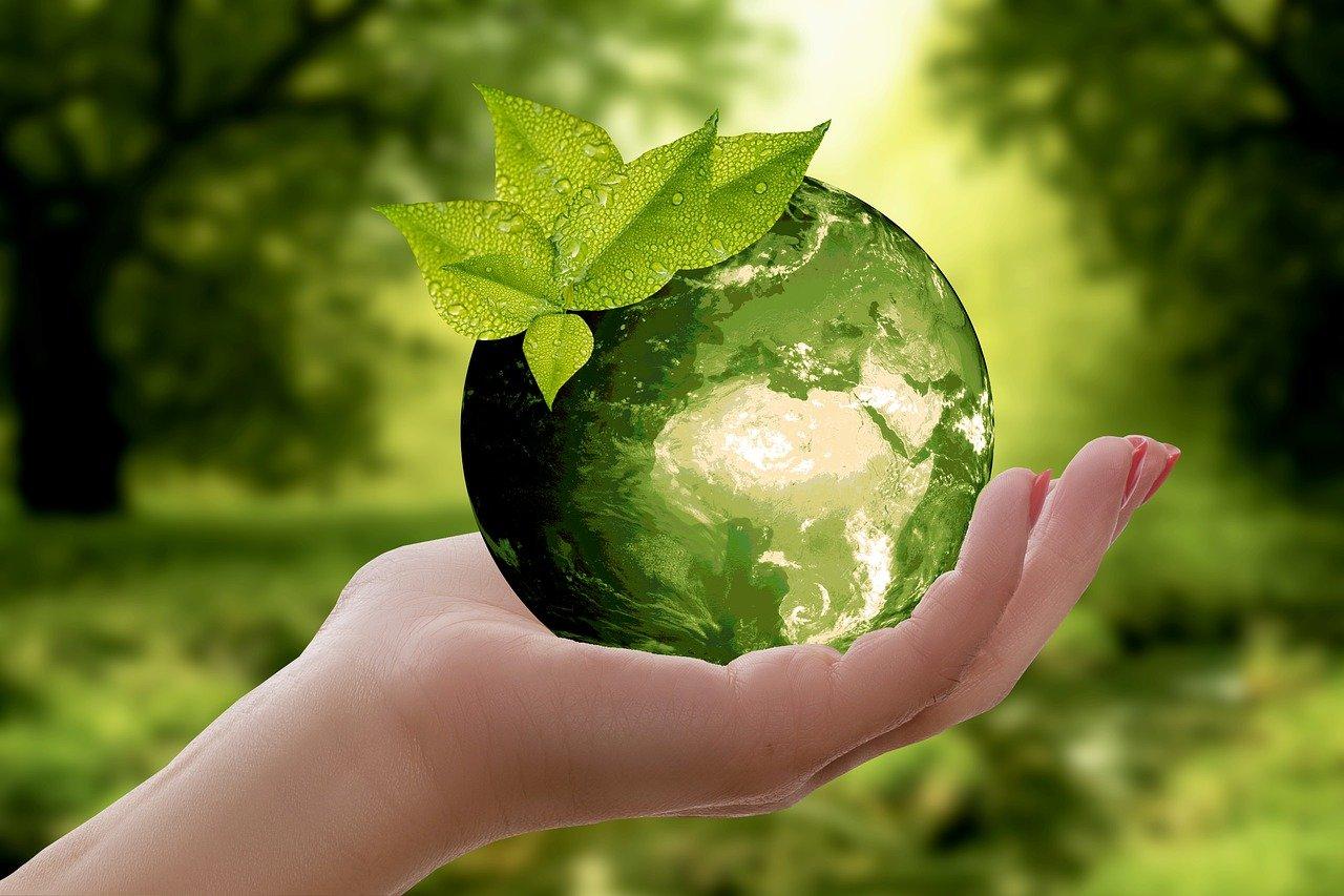Nachhaltigkeit & Klimaschutz